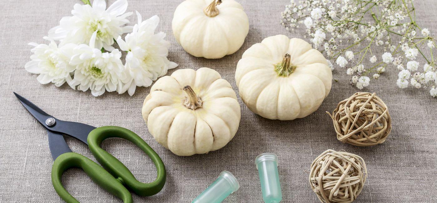 Dynia na Halloween – jak ją przygotować?