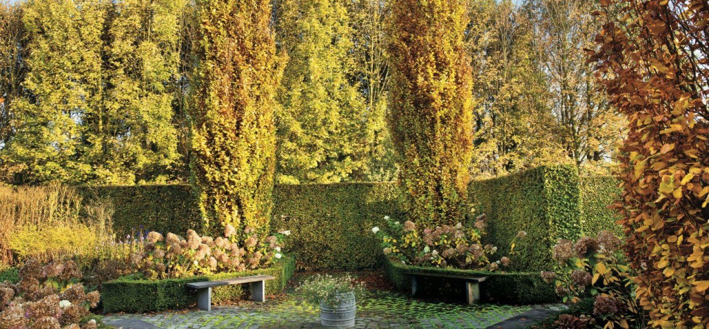 Najpiękniejszy jesienny ogród Holandii