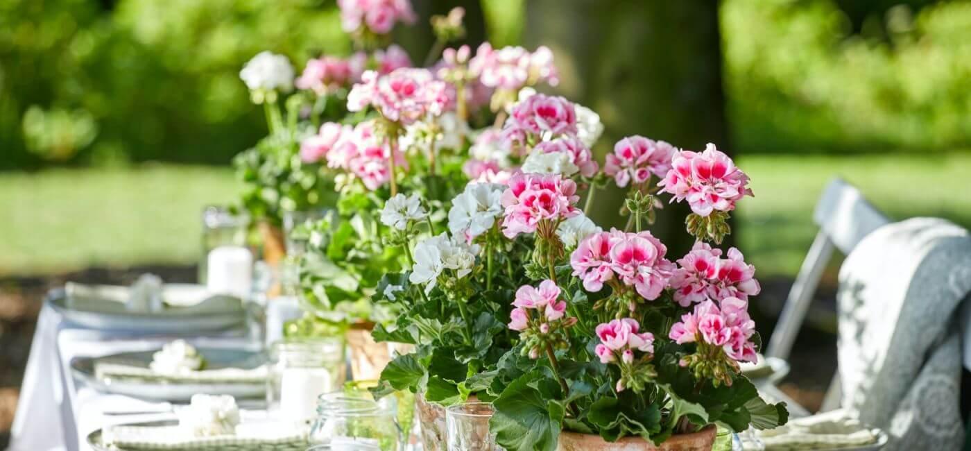 kwiatowe dekoracje na przyjęcie w ogrodzie