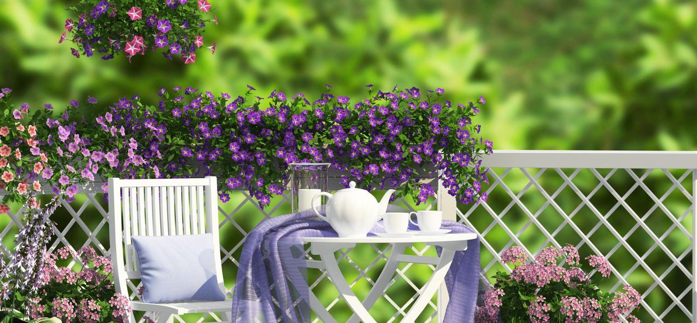 Kwiaty na balkon – jakie wybrać?
