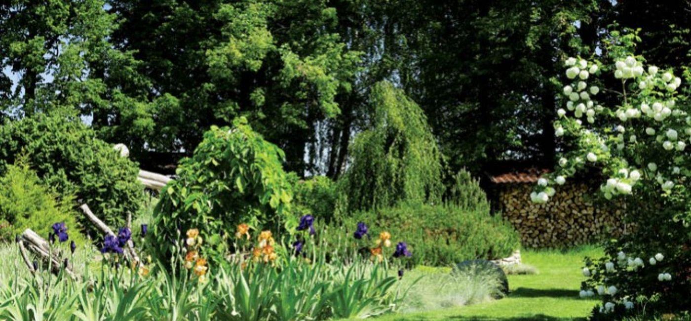 Ogród otoczony jest sosnowym lasem. Podchodzą tu dziki, sarny, zające, bo wiedzą, że zawsze mogą liczyć na jakiś kąsek.