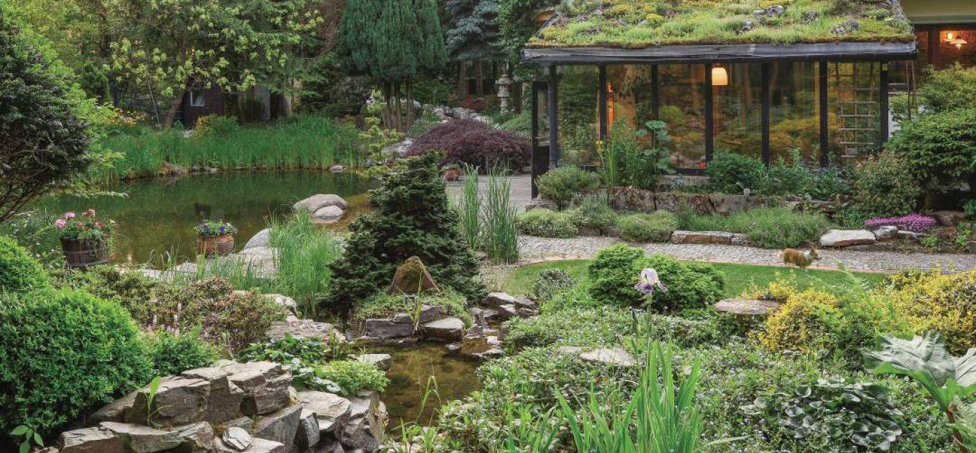 Ten ogród robi to, co chce: naturalnie zaaranżowany ogród blisko lasu