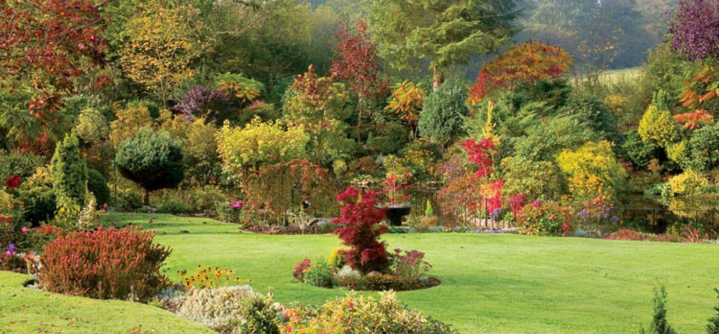 Przed zimowym snem ogród mieni się kolorami niczym paleta szalonego malarza.