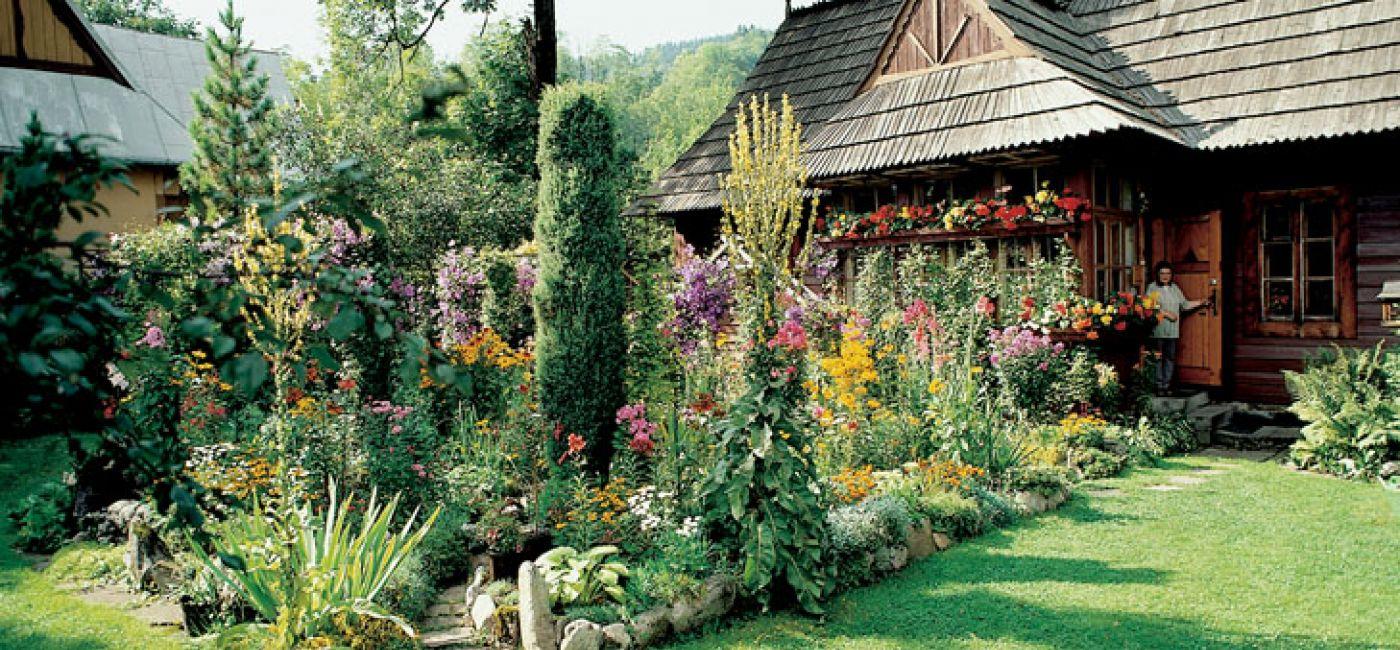 To jeden ze starszych domów w Zakopanem. Otacza go gąszcz bujnej zieleni, a właściwie kwiatów we szystkich barwach tęczy.