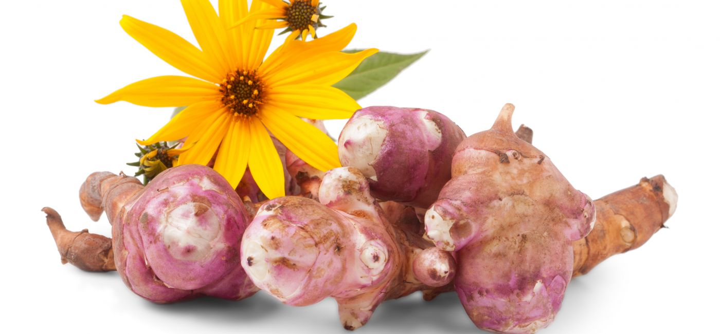 Topinambur: uprawa i gotowanie