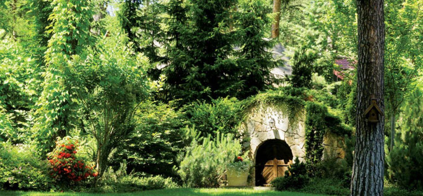 W cieniu wysokich sosen przycupnęła leśna ziemianka.