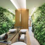 Pionowy ogród w łazience, z żywymi roślinami i oszczędnym systemem automatycznego nawadniania, livinggreenwalls.co.za