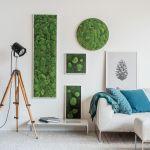 Obrazy z porostów mogą mieć różne kształty, a rośliny – różne odcienie, stylegreen.de