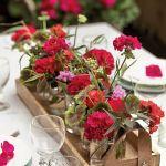 dekoracje z pelargonii na stół