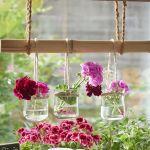 wiszące dekoracje z pelargonii