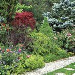 aranżacja ogrodu kwiaty ogrodowe
