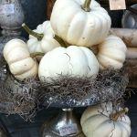 dekoracje z dyni pomysły na halloween