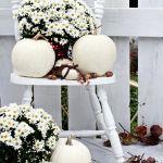 Dekoracje z białej dyni do ogrodu