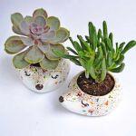 doniczki ceramiczne w kształcie zwierząt