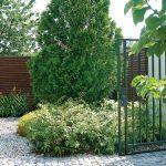 Drzewa i krzewy przyjechały już duże. Kosić trzeba tylko trawnik, wszystko inne rośnie samo jak na drożdżach. Oto ogród