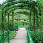 Imponująca aleja pod pergolą. Ogród Moneta w Giverny
