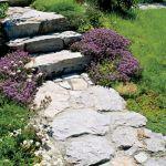 Nie ma tu żadnych roślin, które nie rosłyby dziko w okolicy. Dzięki temu ogród wygląda naturalnie.