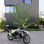 nowoczesny dom w Warszawie