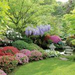 aranżacja ogrodu japońskiego kwiaty