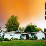 Równo przystrzyżony trawnik i wysokie rośliny okalające dom to sposób na małe ogródki.