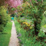 Romantyczna alejka. Ogród Moneta w Giverny