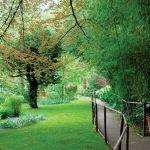 W ogrodzie w stylu romantycznym latwo zagubić się wśród zieleni i zapomnieć o Bożym świecie.