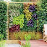 ogród ściana z kwiatów żurawki