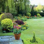ogród trawnik kwiaty w donicach