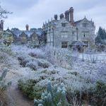 zimowy ogród widok