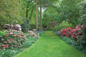 Przez ogród prowadzi ścieżka porośnięta azaliami.