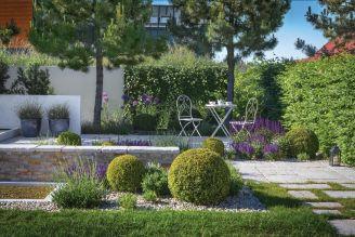 aranżacja ogrodu w bieli fiolecie i zieleni