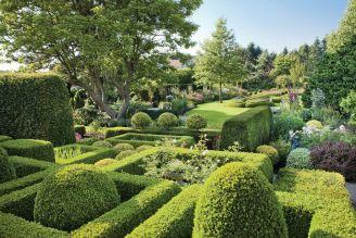 Aranżacja ogrodu: rośliny stały się rzeźbą