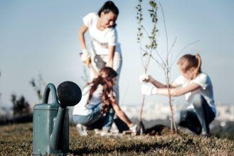 jak stosować hydrożel w ogrodzie
