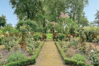 ogród różany w Bilczycach