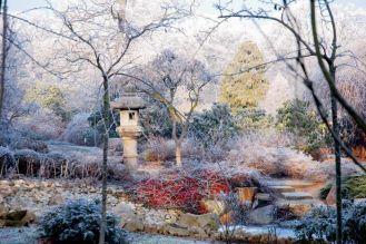 Ogród japoński zimą. Ogród japoński pod śniegiem
