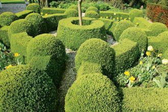 Holenderski ogród w stylu francuskim