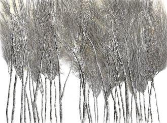 Brzozy , 2008 r. Miedzy drzewami Wiesława Szamockiego