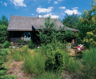 Drewniany dom otaczają drzewa i trawy.
