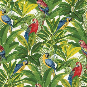Tapeta Grandeco Ideco Home Exotic Parrots, 8 funtów/rolka, cutpricewallpaper.co.uk