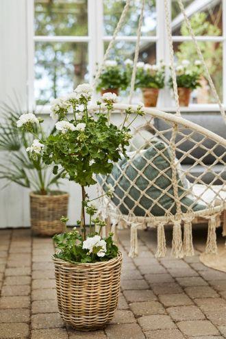 ogrodowe dekoracje z wikliny