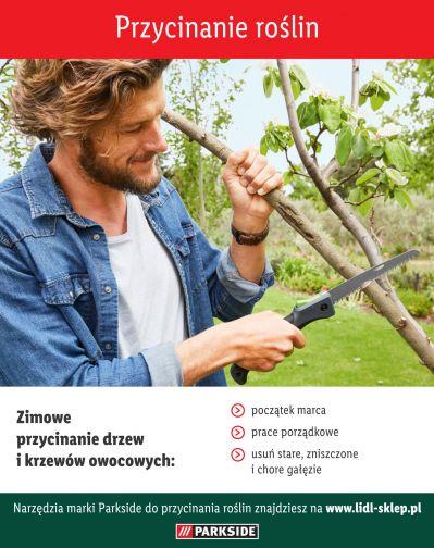 Jak przycinać drzewa i krzewy owocowe - infografika
