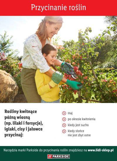 Wskazówki dotyczące przycinania roślin - infografika