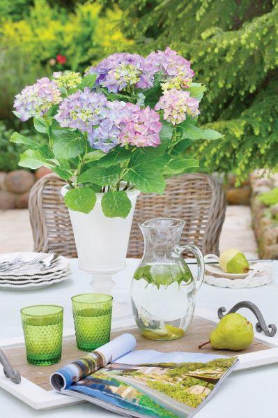 kwiatowe dekoracje w doniczkach na stół