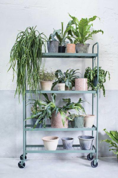 stojak na rośliny