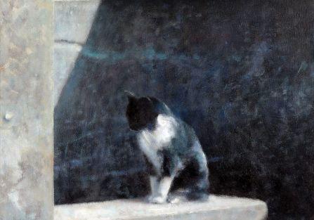 Piotr Pilawa: kocie zaułki