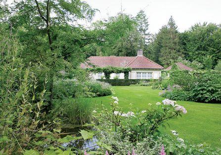 Choć ogród znajduje się w lesie, jest słoneczny i przestronny.