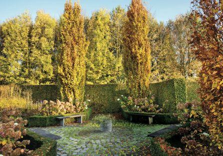 jesienny ogród kolory