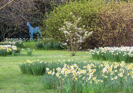 Koń z brązu wychyla się z lasku, w którym rosną dereń jadalny (jeden z najwięszych w Anglii), klon palmowy i magnolia.