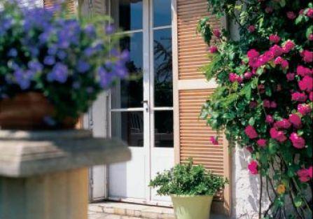 Taras tonie wśród róż - widać, że Anna ma dobrą rękę do roślin.