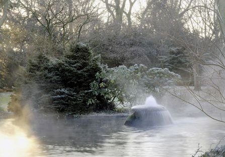 Zima w japońskim ogrodzie